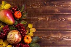 秋天框架用在土气木背景,拷贝的小橙色南瓜、野玫瑰果叶子、苹果、梨和荚莲属的植物莓果 免版税库存图片