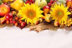 秋天框架用果子、南瓜和向日葵 免版税图库摄影