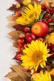 秋天框架用果子、向日葵和南瓜 免版税库存照片