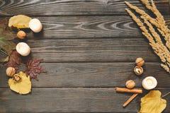 秋天框架由干秋天制成离开,杯子可可粉与marshmellows,坚果,桂香,格子花呢披肩,苹果 在棕色木头后面的顶视图 免版税库存图片