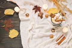 秋天框架由干秋天制成离开,杯子可可粉与marshmellows,坚果,桂香,格子花呢披肩,苹果 在棕色木头后面的顶视图 免版税库存照片