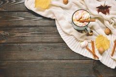 秋天框架由干秋天制成离开,杯子可可粉与marshmellows,坚果,桂香,格子花呢披肩,苹果 在棕色木头后面的顶视图 库存照片