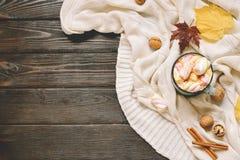 秋天框架由干秋天制成离开,杯子可可粉与marshmellows,坚果,桂香,格子花呢披肩,苹果 在棕色木头后面的顶视图 免版税图库摄影