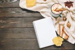 秋天框架由干秋天叶子、杯子与marshmellows的可可粉,坚果、桂香、格子花呢披肩、苹果和开放习字簿制成 免版税库存照片