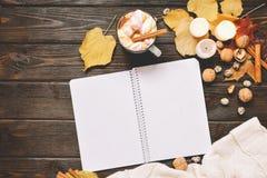 秋天框架由干秋天叶子、杯子与marshmellows的可可粉,坚果、桂香、格子花呢披肩、苹果和开放习字簿制成 免版税库存图片