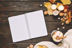 秋天框架由干秋天叶子、杯子与marshmellows的可可粉,坚果、桂香、格子花呢披肩、苹果和开放习字簿制成 库存图片