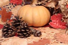 秋天桌、南瓜和锥体木表面上 免版税库存照片
