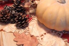 秋天桌、南瓜和锥体木表面上 图库摄影