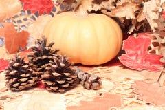秋天桌、南瓜和锥体木表面上 免版税库存图片