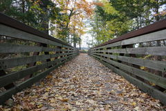 秋天桥梁包括叶子 免版税库存照片
