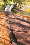 秋天桥梁横向池塘台阶 库存照片