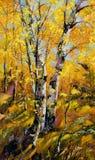 秋天桦树木头 库存照片