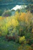 秋天森林之前包围的湖 免版税库存照片
