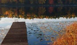 秋天森林反射- New England湖 库存照片