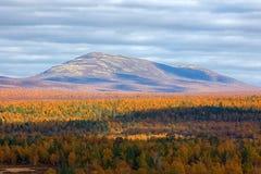 秋天森林和山 免版税库存照片