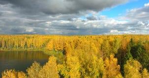 秋天森林和河从概略的看法 影视素材