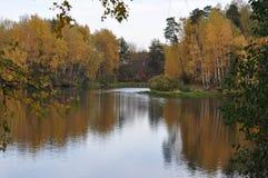 秋天森林和河 免版税库存图片