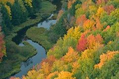 秋天森林和流 免版税库存照片