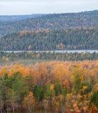 秋天森林和湖区 图库摄影