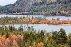秋天森林和湖区 库存照片