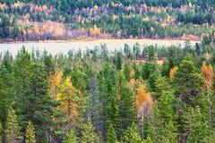 秋天森林和湖区 免版税图库摄影
