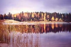 秋天森林和湖 库存图片