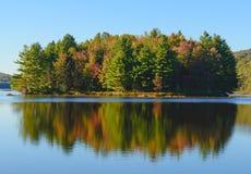 秋天森林和湖 免版税库存照片