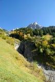 秋天森林和阿尔卑斯 免版税库存照片