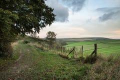 秋天森林和领域在日出风景期间 免版税库存照片