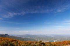 秋天森林在与云彩的蓝天下 库存照片