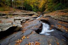 秋天森林在森林晃动小河 免版税库存照片