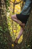 秋天森林妇女年轻人 免版税库存照片