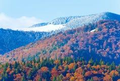 秋天森林山 库存图片