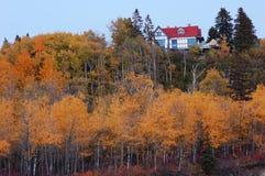 秋天森林房子红色 免版税图库摄影