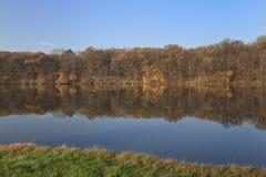 秋天森林海岸线 库存照片