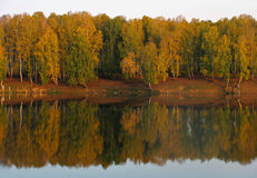 秋天森林湖视图 库存图片