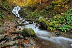 秋天森林瀑布 免版税图库摄影