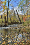 秋天森林的河15 免版税库存照片