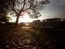 秋天森林罗马尼亚日落 库存图片