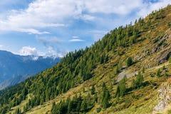 秋天森林美好的风景小山的在意大利Al 免版税库存照片