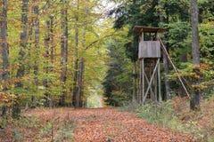 秋天森林老猎人的立场在森林里 库存照片
