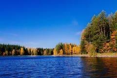 秋天森林被反射的水 芬兰 库存照片