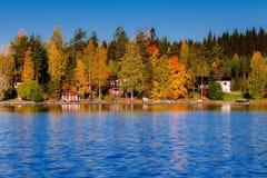 秋天森林被反射的水 芬兰 免版税库存图片