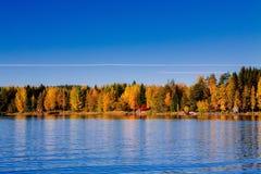 秋天森林被反射的水 芬兰 免版税图库摄影