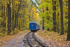 秋天森林铁路培训 免版税库存图片