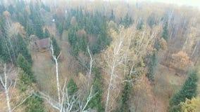 秋天森林雾的村庄  股票录像