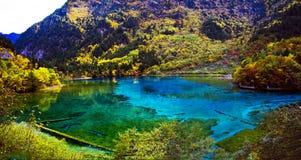 秋天森林jiuzhaigou湖 免版税库存图片