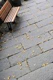 秋天椅子划分为的叶子 图库摄影