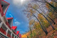 秋天植被和红色屋顶 库存照片