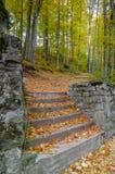 秋天楼梯 库存照片